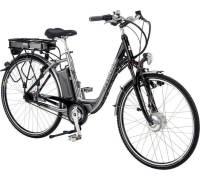 pegasus e bike2 test fahrrad. Black Bedroom Furniture Sets. Home Design Ideas