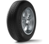 g-Force Winter; 205/55 R16 91H