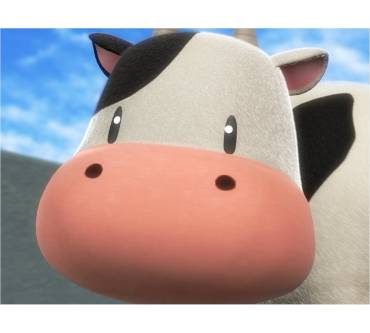 Harvest Moon: The Tale of Two Towns Produktbild