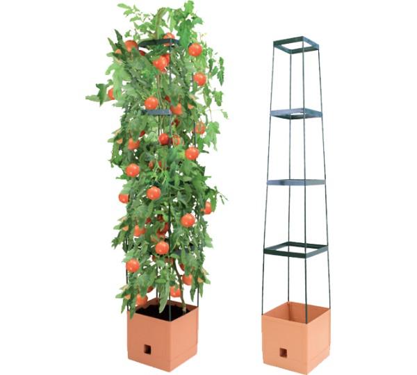 bio green tomatenturm im test. Black Bedroom Furniture Sets. Home Design Ideas